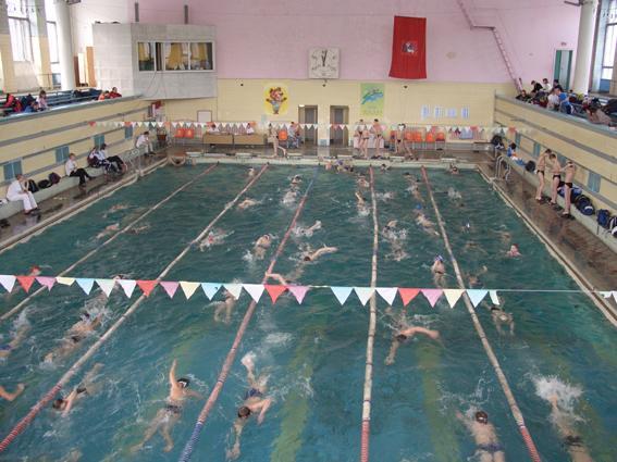 бассейн на динамо для детей ростов-на-дону